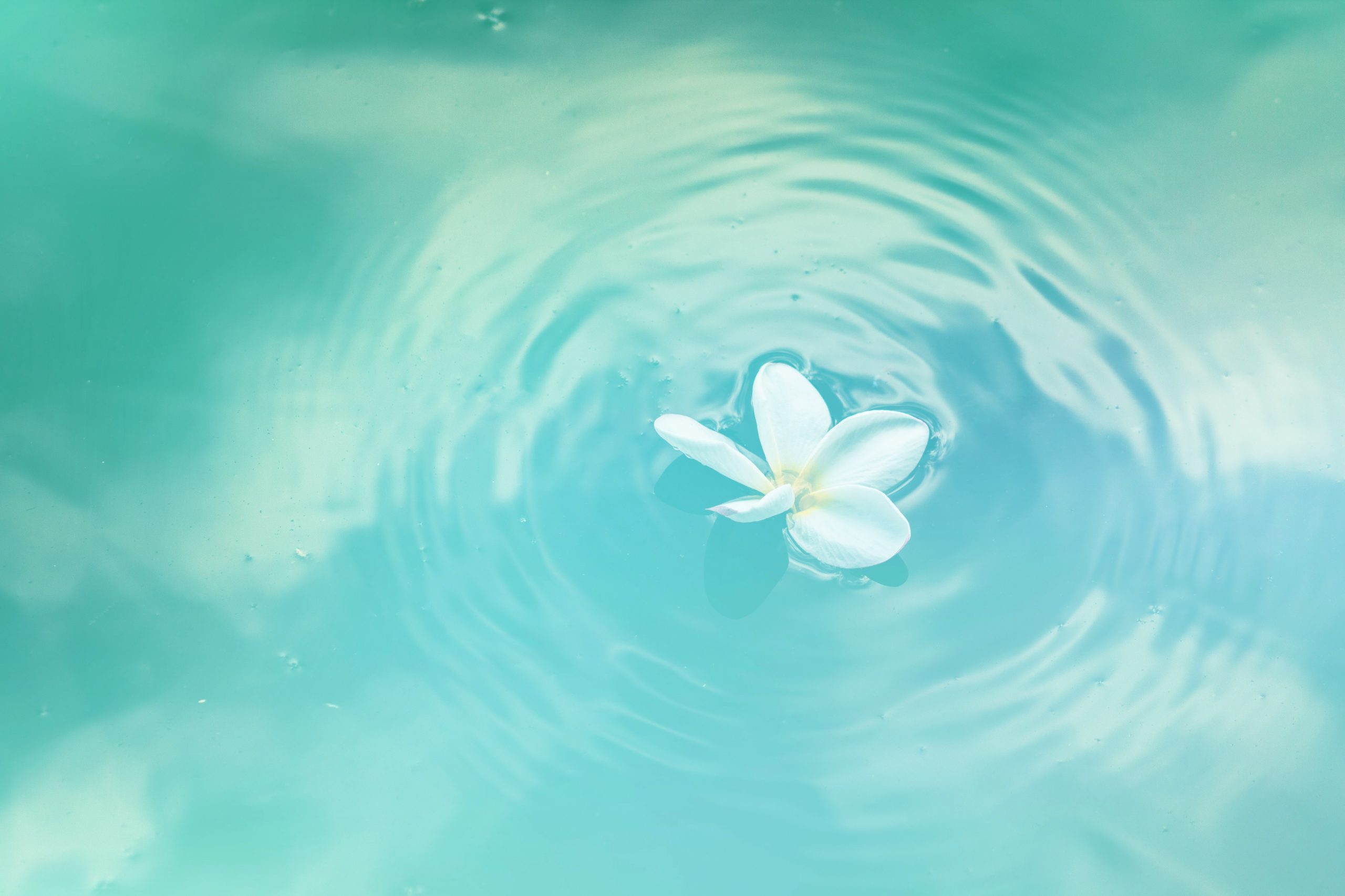 Reduce Stress by Increasing Clarity